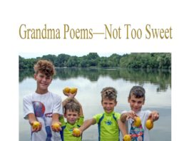 "The cover of ""Grandma Poems - Not Too Sweet"" by Carolyn Raphael, which features her five grandchildren holding lemons, alludes to the sweet, but not too sweet theme of the book. (Photo courtesy of Carolyn Raphael)"