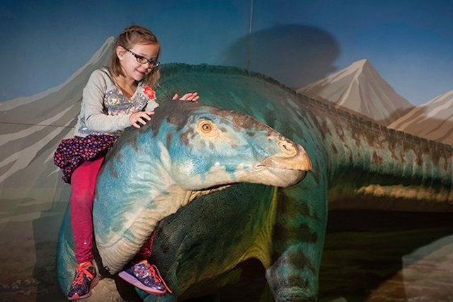 Dinosaur Exhibit Long Island