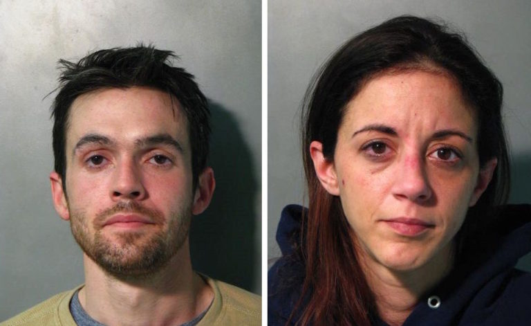 Two arrested after purse theft at New Hyde Park ShopRite: police
