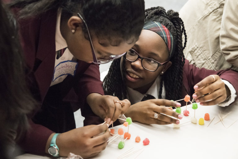 NYIT Old Westbury hosts Introduce a Girl to Engineering Day