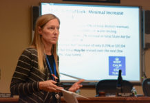 Lisa Rutkoske explains the revenue sources for the Herricks school budget proposal. (Photo by Janelle Clausen)