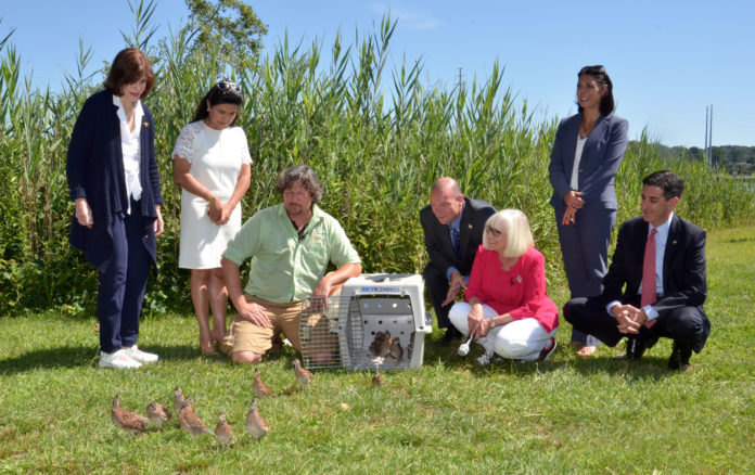 Ranger Eric Powers and town officials released quail along the North Hempstead Harbor Trail. (Photo courtesy of the Town of North Hempstead)