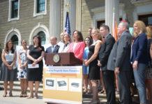 Legislator Ellen Birnbaum, a Democrat from Great Neck, implored legislators to support a gun safety storage law. (Photo by Janelle Clausen)
