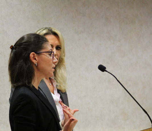 Natalie Economou, a Manhasset resident, was approved by the village board to open America's first WowMoms World franchise location in Mineola. (Photo by Rebecca Klar)