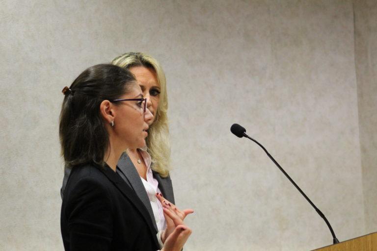 Mineola board OKs 'Wow Mom's World' to open on Jericho Turnpike