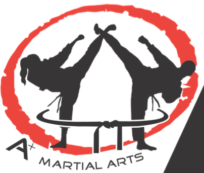 A+ Martial Arts will soon be opening a studio in Great Neck. (Photo courtesy of A+ Martial Arts)
