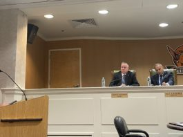 Mineola trustees reserved their decision during a public hearing over allowing the retail sale of cannabis in the village. (Photo by Brandon Duffy)